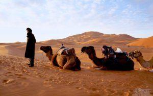 Merzouga, Camel Trek, Morocco, tour of Morocco