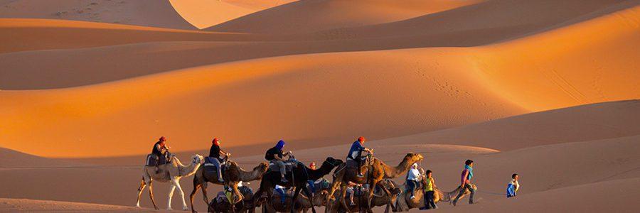 Camel Trek, Merzouga, Morocco