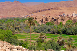 Todgha Valley, Morocco