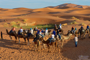 morocco camel trek, merzouga camel trek, morocco group tour