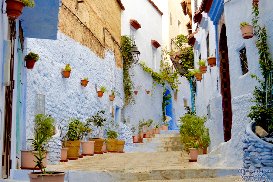 Chefchaouen, Blue City Morocco, Morocco Immersion