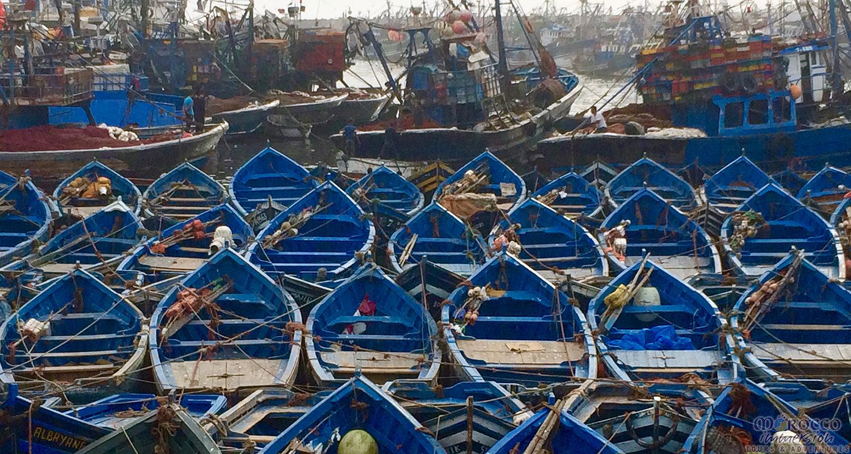 Blue Boats of Essaouira Magical